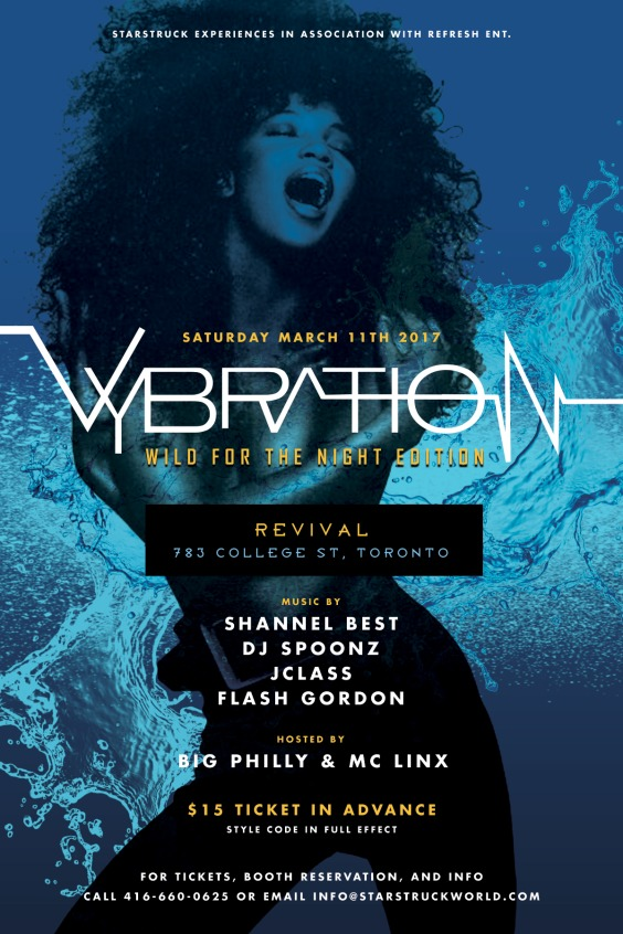 VYBRATION - Wild For The Night Edition
