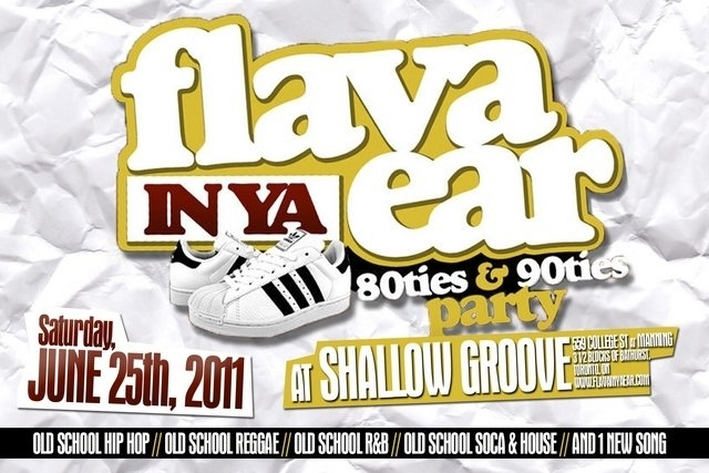 Flava In Ya Ear Old School Party Shallow Groove