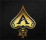 Located in the King West district, ACE is Toronto's newest upscale and sophisticated nightlife destination