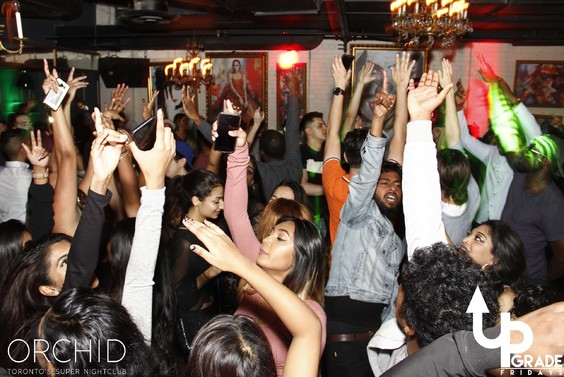 Orchid fridays nightclub nightlife toronto bottle service 000